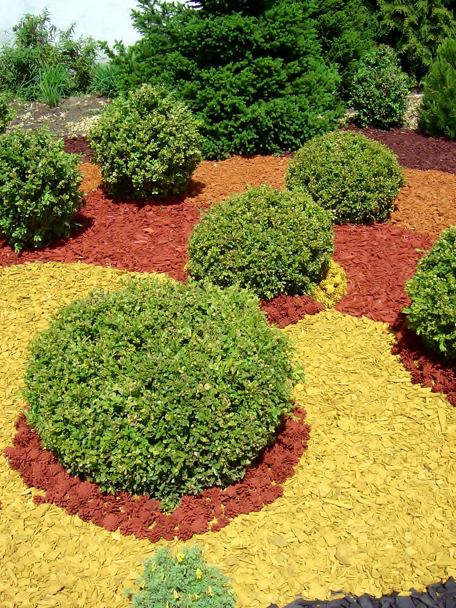 Aranżacja ogrodowa z wykorzystaniem zrębków i szyszek